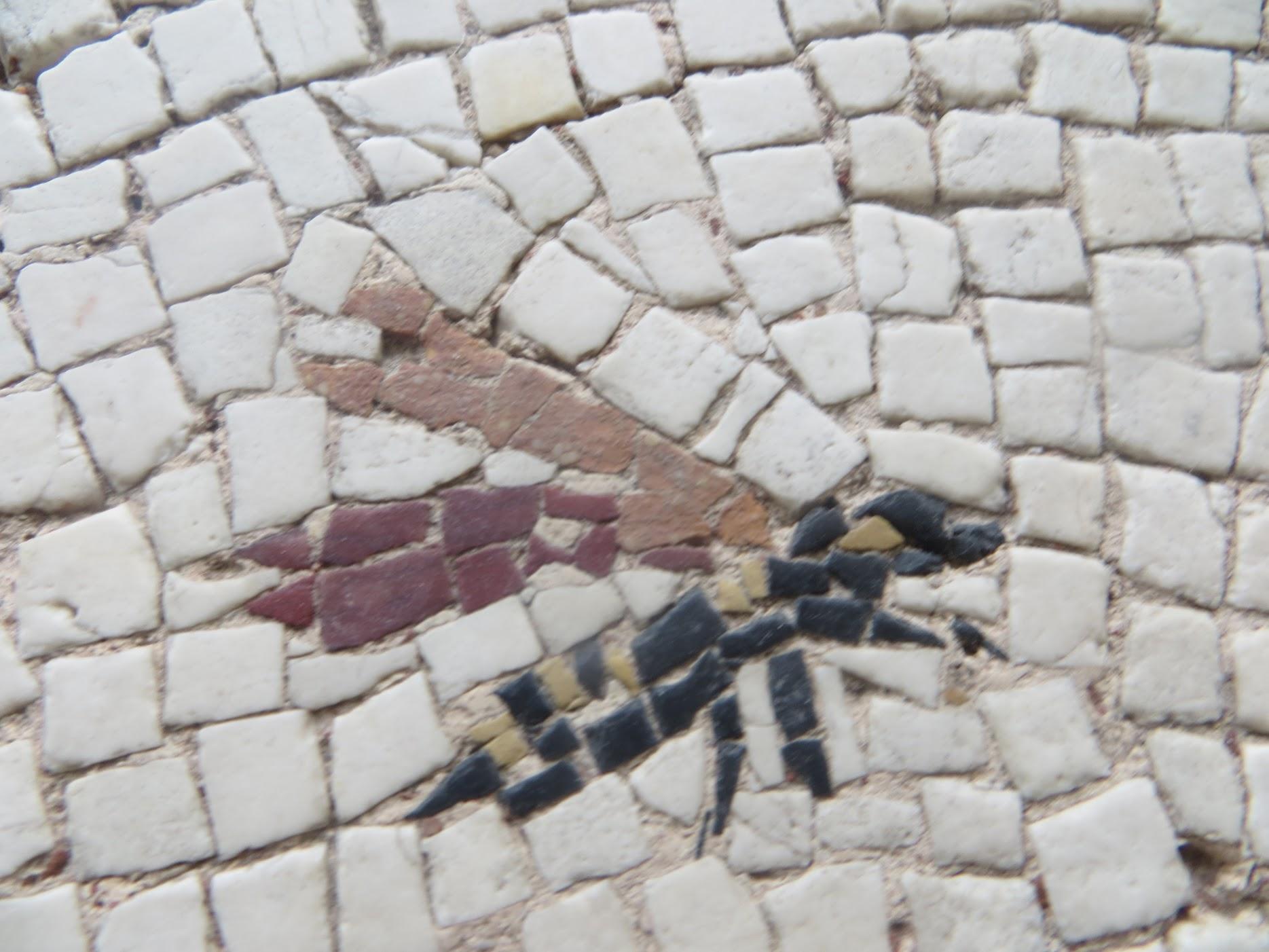 Détail d'une mosaïque de Saint-Romain-en-Gal